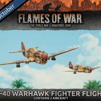 P-40 Warhawk Fighter Flight