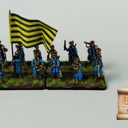 Transylvanian household infantry