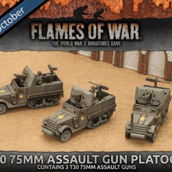 T30 75mm Assault Gun Platoon